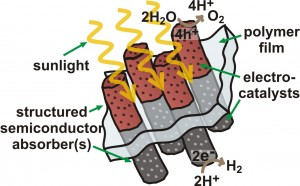Schematic depiction of a semiconductor device capable of using the energy in sunlight to split water into hydrogen fuel and oxygen. The semiconductor elements (red and grey rods) absorb different colors of sunlight and create excited electrons. The excited electrons are transferred to electrocatalysts, i.e the dots on the rods, that speed up the reaction.